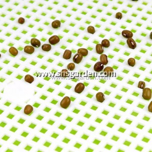 Microgreen Tray 33 x 25 x 4.7 cm Green and White 2-layer System Suitable for All Microgreen